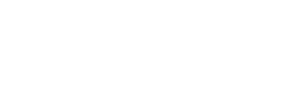 Shajani LLP Chartered Professional Accountants
